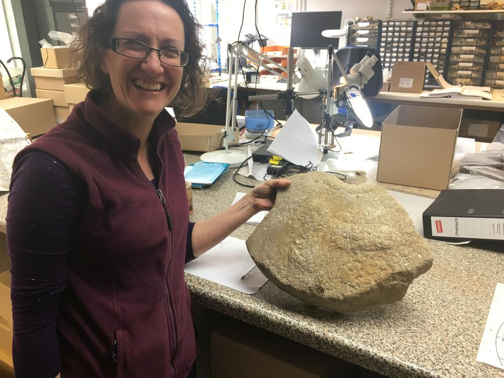 Dr Ruth Shaffrey of Oxford Archaeology with the rare Roman millstone. (Highways England/ PA)