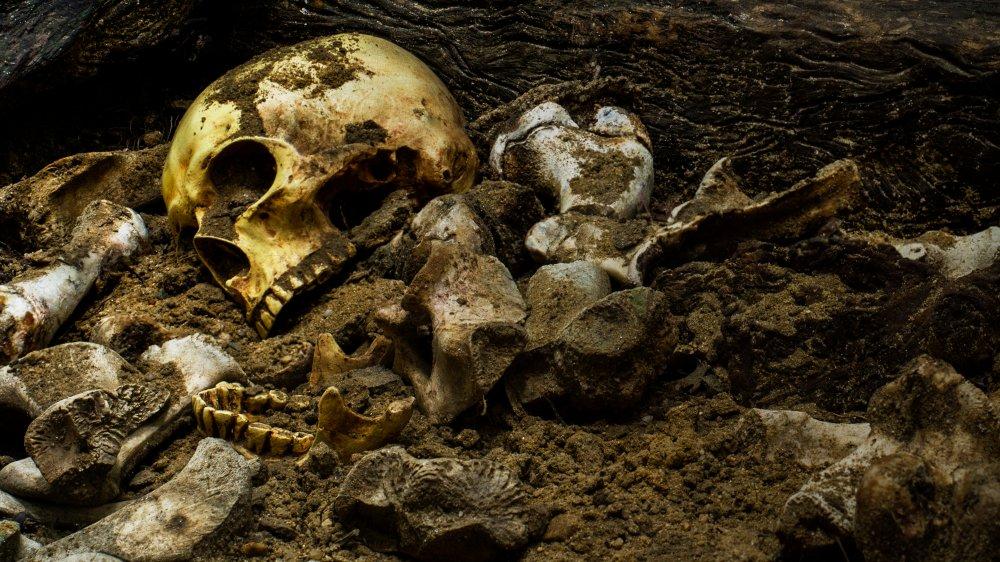 World's Oldest Murder