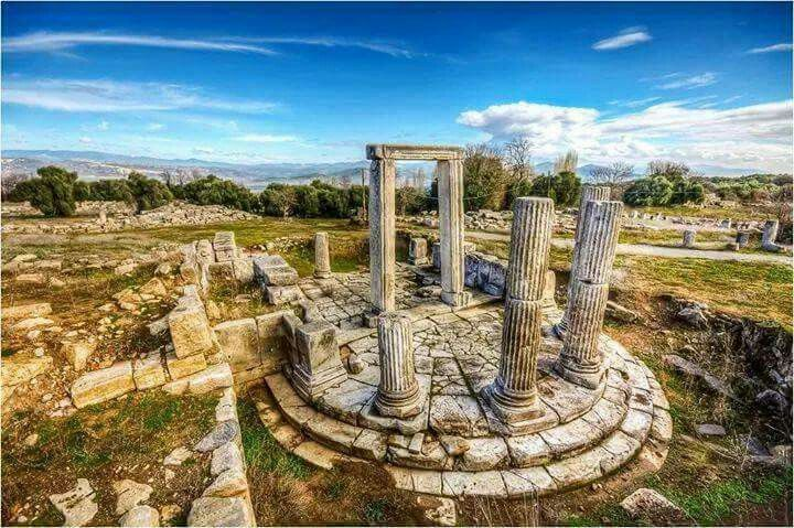 Columns in Lagina Hecate Sanctuary Rise Again