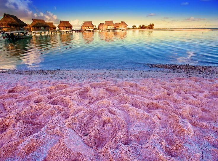 Pink Sands – Bahamas