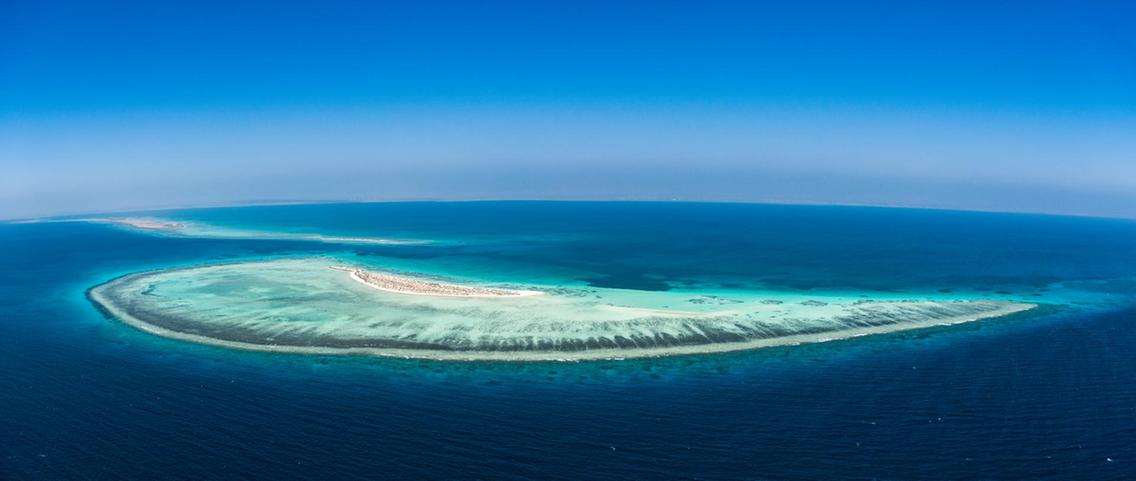 The Red Sea Project includes a vast archipelago of more than 50 untouched islands with direct access to pristine and thriving coral reefs.