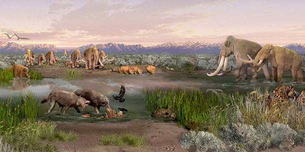 Pleistocene epoch. ( NPS Photo )