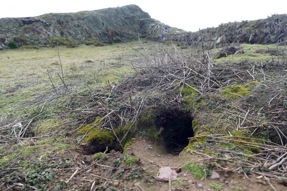 The rabbit hole where the bevelled pebble was found