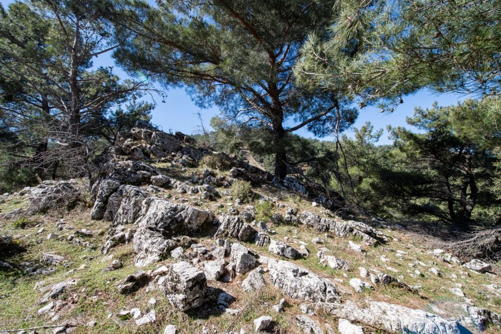 After four years of research, the quarry was unearthed in Tirazli village in the Karabag district of the Aegean province of Izmir, according to a statement by the Izmir Metropolitan Municipality.