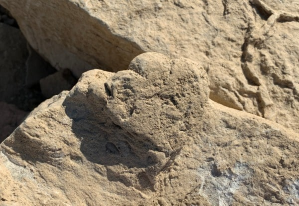 A track left by a juvenille stegosaurus discovered in Xinjiang Ugyur autonomous region. The track measures 5.7 centimeters. [Photo: China Daily]