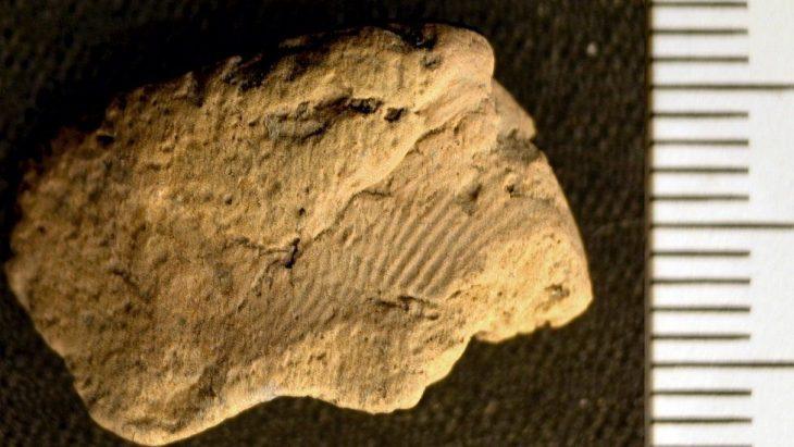 Orkney pottery
