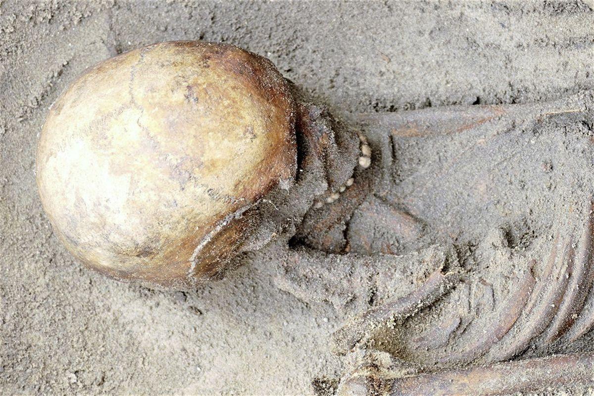 Alderney skeletons