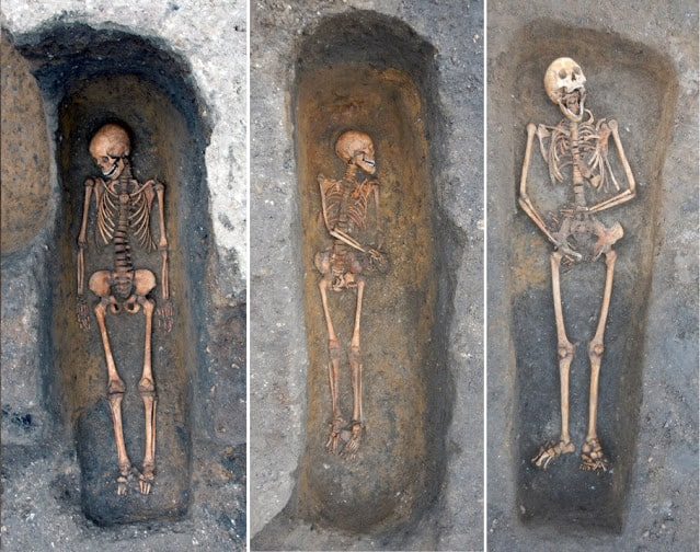 Individuals buried in the chapter house of the Augustinian friary, Cambridge, who died of plague  Photo: Cambridge Archaeological Unit