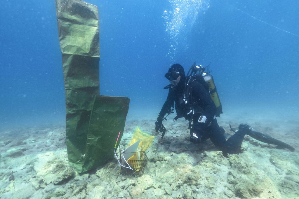 Archaeologist diver is seen at a Neolithic settlement in Lumbarda, Croatia
