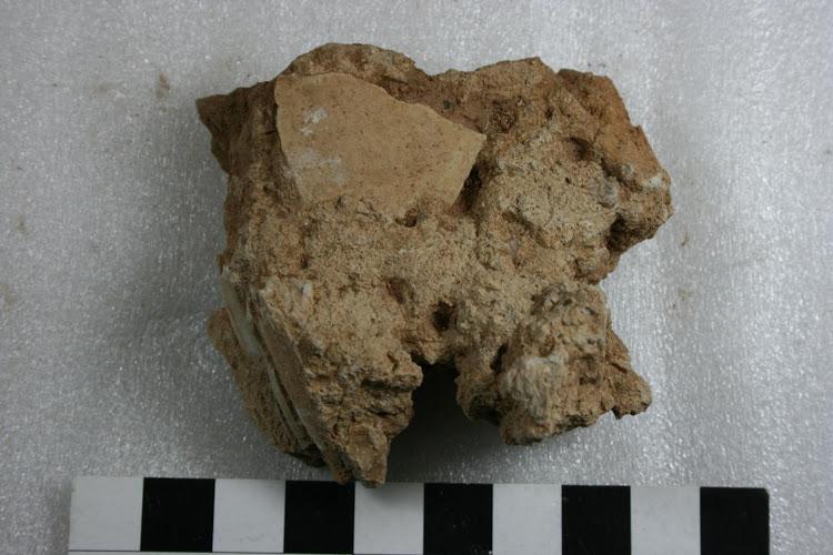 A fragment of ancient ostrich shell embedded in calcrete from Bundu Farm. Photo: Philip Kiberd