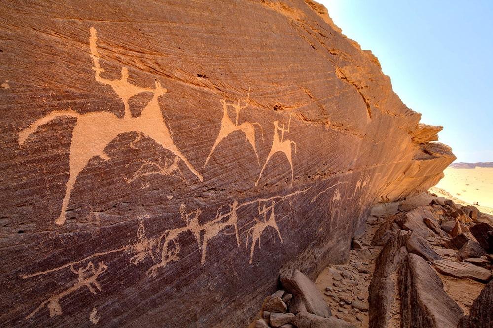 Bir-Hima-Cavalry-Painted-cattle