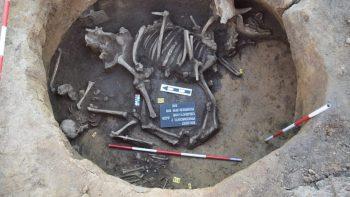 Photo: Archeological Center in Olomouc
