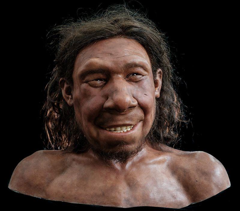 neanderthaler krijn