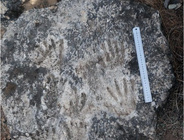Ichnological traces at Quesang in Tibet.