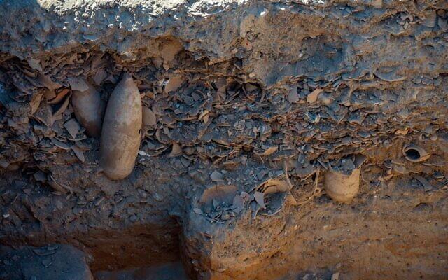 Trash area of Yavne Byzantine winepress site where broken fragments of jars were thrown (Yaniv Berman/IAA)
